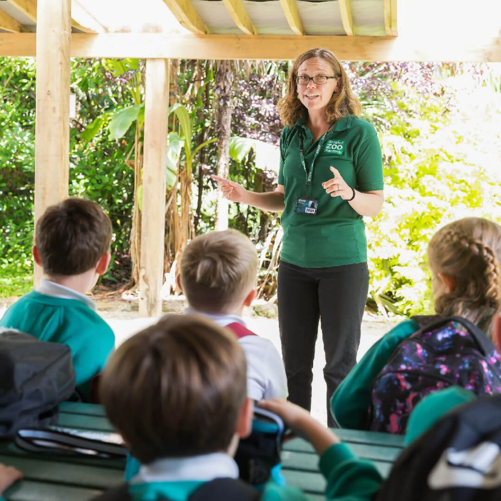 Primary school group listening to a zoo education officer