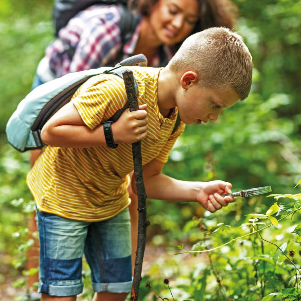 Child with magnifying glass in nature, looking at leaves