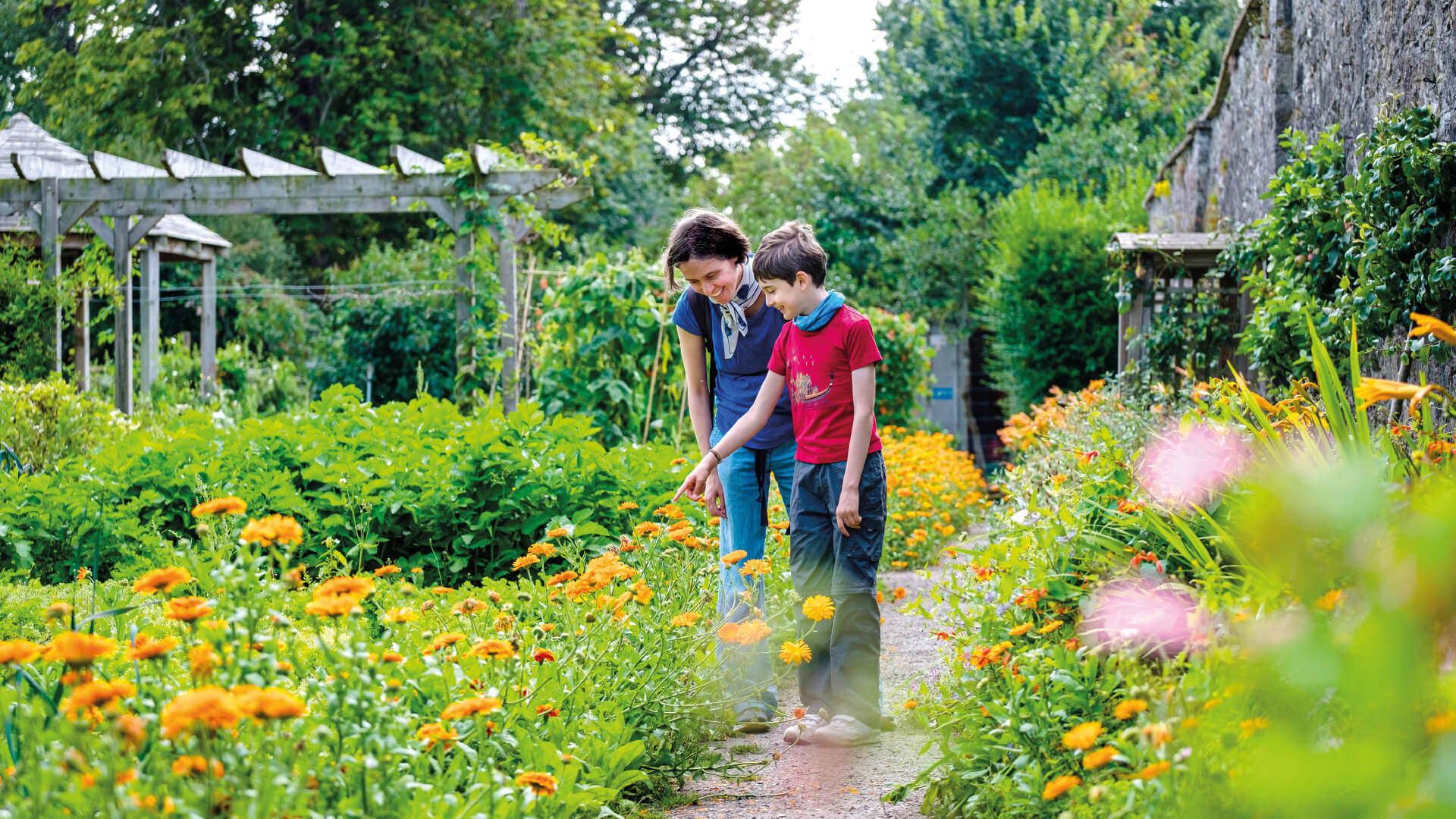 Family at Sanctuary Garden looking at flowers, Wild Place Project (copyright Evan Dawson)