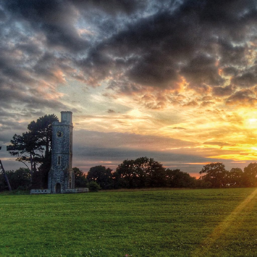 Tower Meadow sunset at Wild Place Project