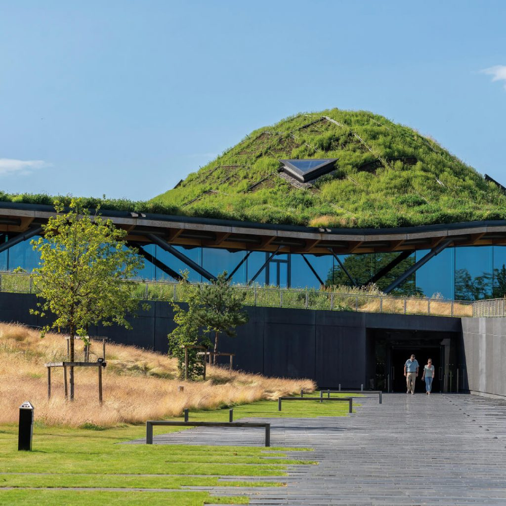Green-roofed building with glass front