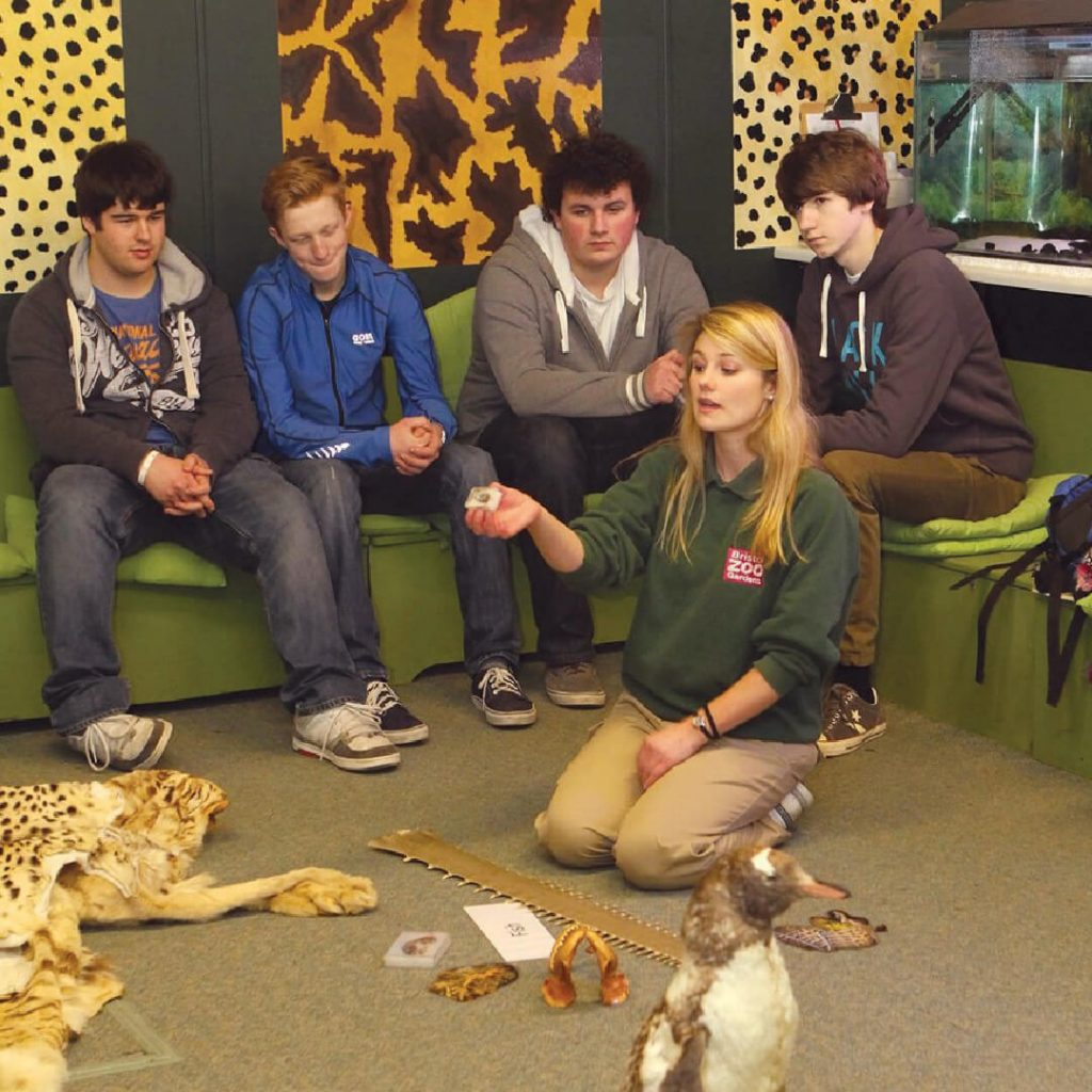 Education session at Bristol Zoo Gardens