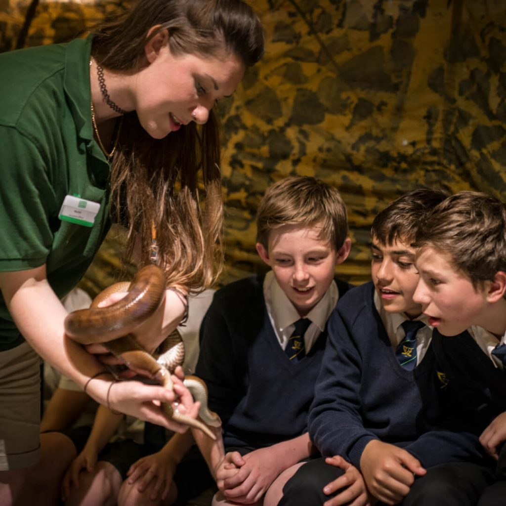 Education officer showing students a snake during an education session