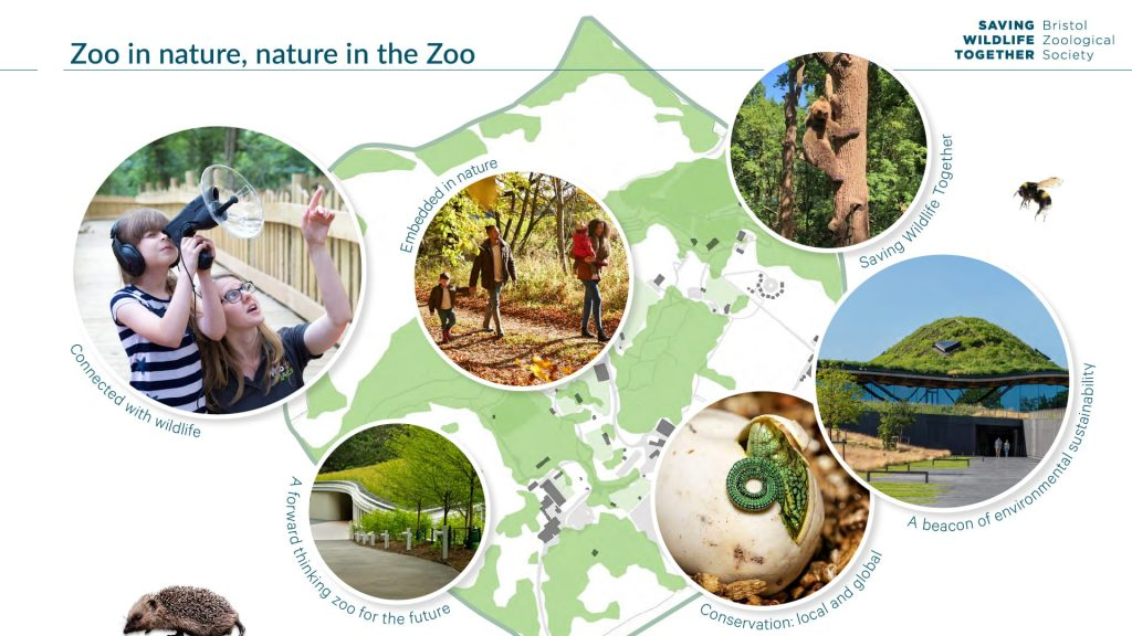 Moodboard depicting the site plan with images of people interacting with their natural environment, green-roofed buildings and animals
