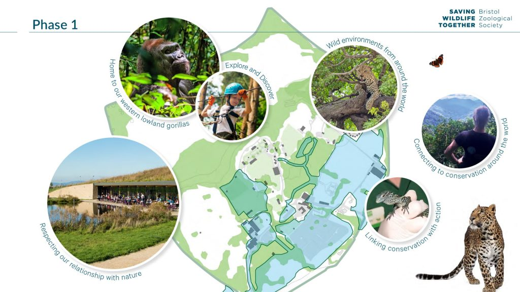 Moodboard depicting the site plan for phase 1, including photographs of animals in a green natural environment, people in a woodland and a green-roofed cafe