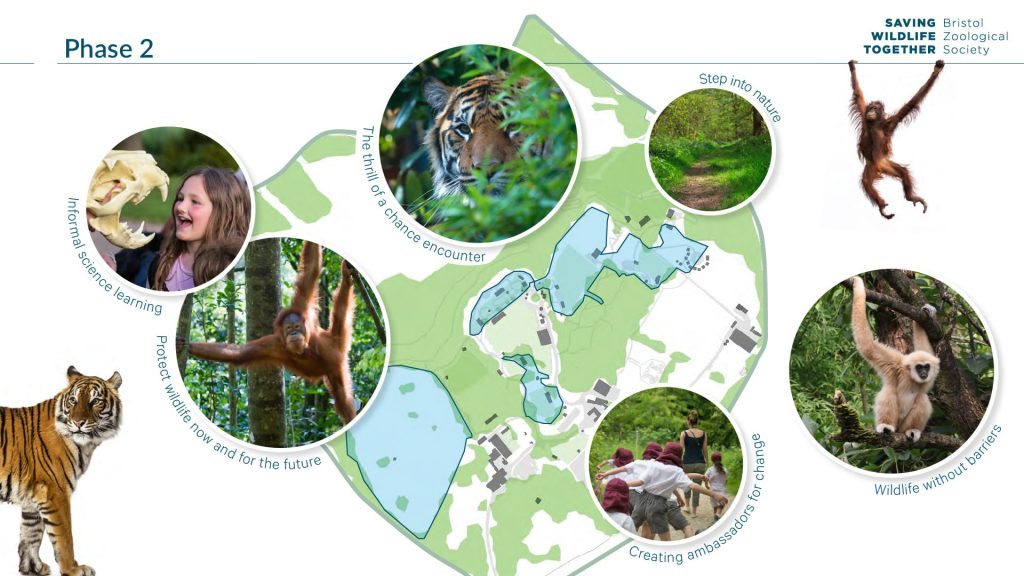 Moodboard depicting the site plan for phase 2 - including photographs of apes in a forest and children being in a native woodland area