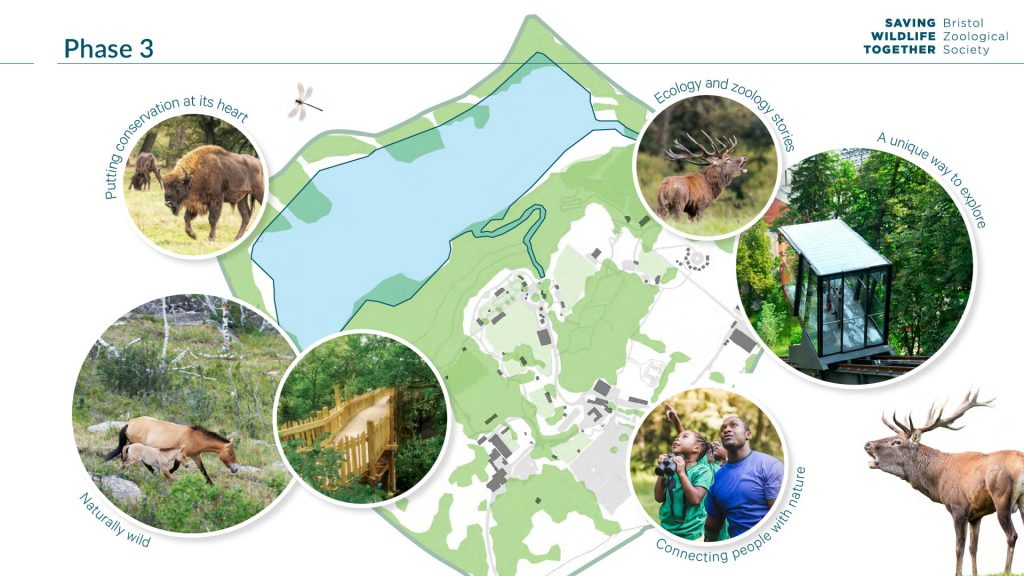 Moodboard depicting the site plan for phase 3 - including photographs of Eurasian animals in woodland areas, people interacting in nature and integrated accessible walkways and transport